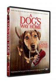 Drumul unui caine catre casa / A Dog`s Way Home - DVD