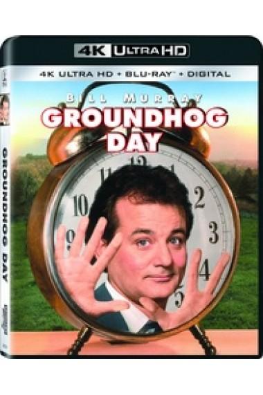 Ziua Cartitei / Groundhog Day - UHD 2 discuri (4K Ultra HD + Blu-ray)