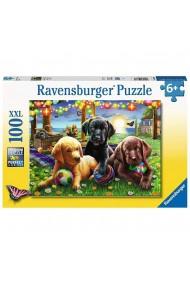 Puzzle catei la picnic 100 piese Ravensburger