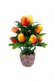Pom plastic cu fructe 15x20 cm dae6334