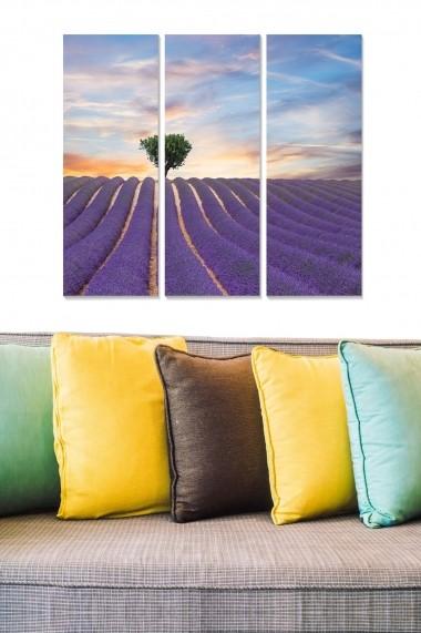 Tablou decorativ (set 3 piese) Bianca 553BNC2946 multicolor