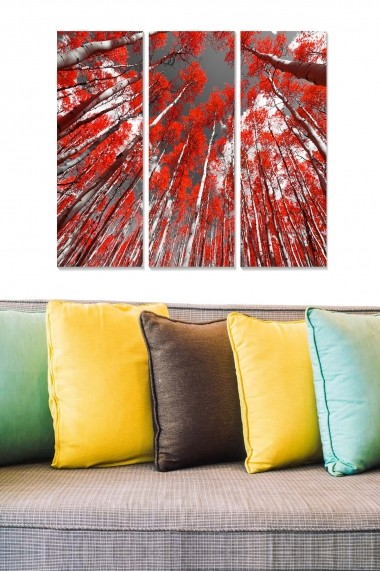 Tablou decorativ (set 3 piese) Bianca 553BNC3370 multicolor