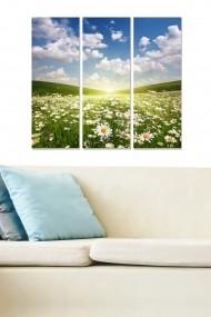 Tablou decorativ (set 3 piese) Bianca 553BNC3715 multicolor
