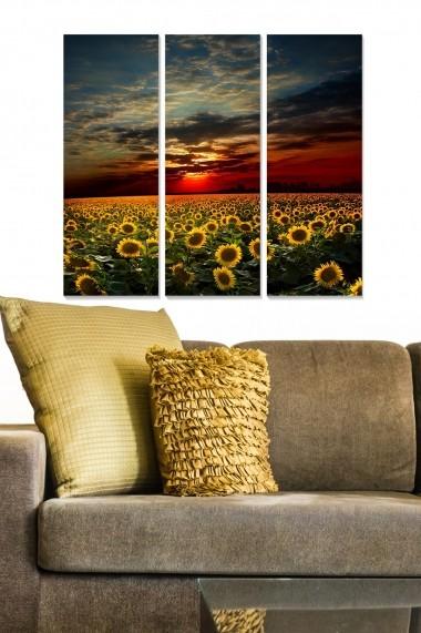 Tablou decorativ (set 3 piese) Bianca 553BNC3742 multicolor