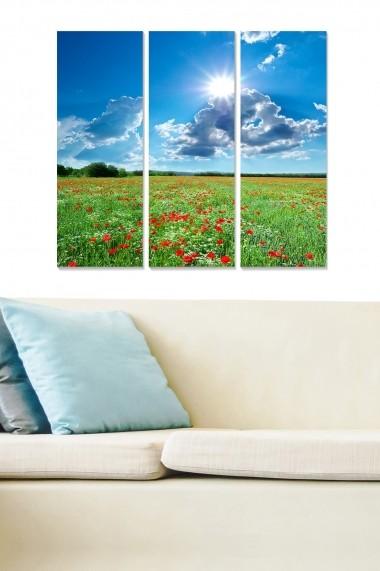 Tablou decorativ (set 3 piese) Bianca 553BNC3817 multicolor