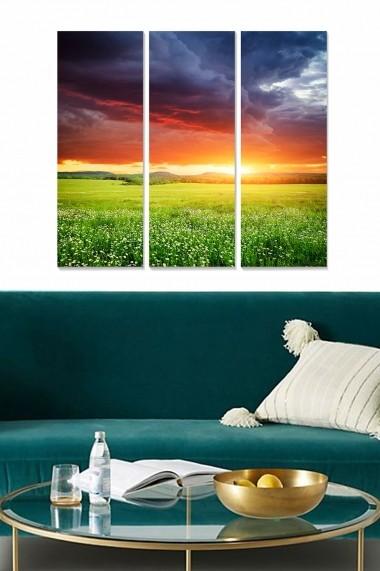 Tablou decorativ (set 3 piese) Bianca 553BNC3818 multicolor