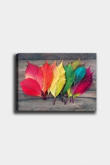 Tablou decorativ din panza Bract 529TCR1788 multicolor
