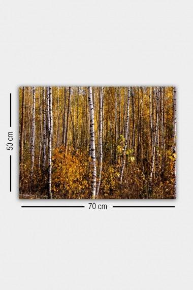 Tablou decorativ din panza Bract 529TCR1798 multicolor