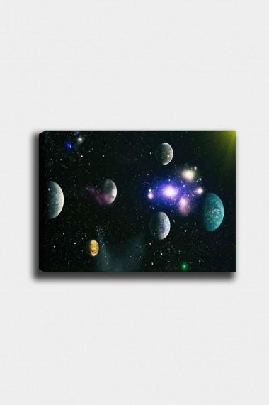 Tablou decorativ din panza Bract 529TCR1806 multicolor