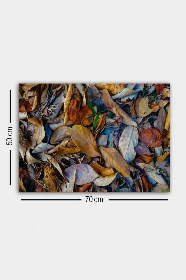 Tablou decorativ din panza Bract 529TCR1817 multicolor