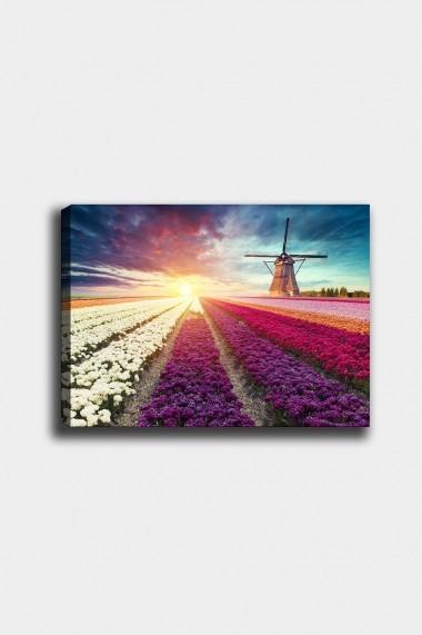 Tablou decorativ din panza Bract 529TCR2153 multicolor