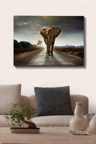 Tablou decorativ din panza Bract 529TCR1570 multicolor