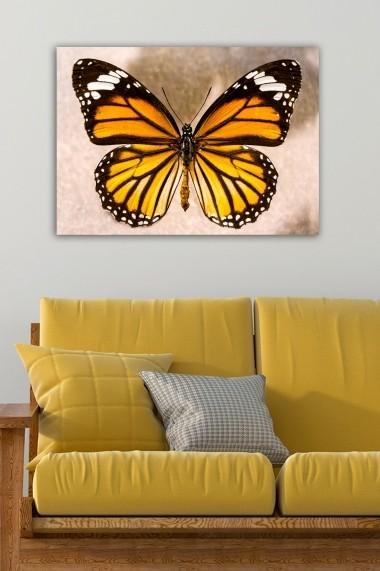 Tablou decorativ din panza Bract 529TCR1634 multicolor