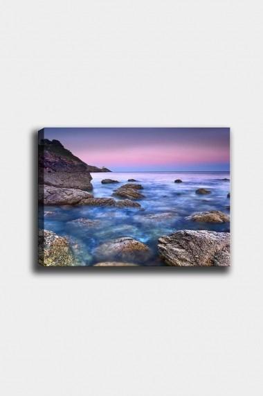 Tablou decorativ din panza Bract 529TCR1665 multicolor