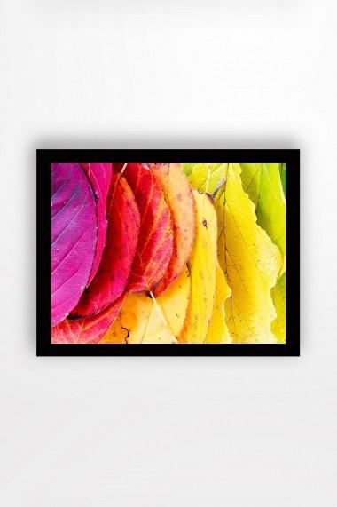 Tablou cu rama din lemn Marvellous 537MRV2193 multicolor