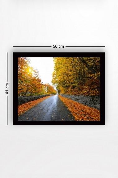 Tablou cu rama din lemn Marvellous 537MRV2231 multicolor