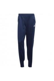 Pantaloni pentru barbati Adidas  Condivo 20 Track Pant M ED9257