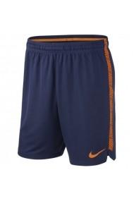 Bermude pentru barbati Nike  Dry Squad M 859908-429
