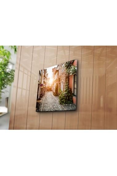 Tablou din panza Bonanza ASR-242BNZ1254 Multicolor