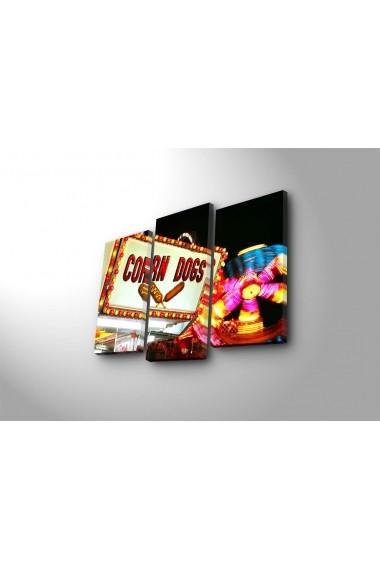 Set 3 tablouri din panza Bonanza ASR-242BNZ3229 Multicolor