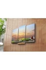 Set 3 tablouri din panza Bonanza ASR-242BNZ3203 Multicolor