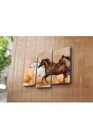 Set 3 tablouri din panza Bonanza ASR-242BNZ3249 Multicolor