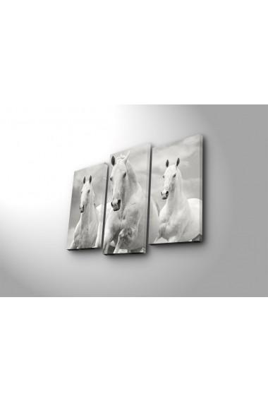 Set 3 tablouri din panza Bonanza ASR-242BNZ3266 Multicolor