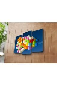 Set 3 tablouri din panza Bonanza ASR-242BNZ3267 Multicolor