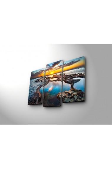 Set 3 tablouri din panza Bonanza ASR-242BNZ3270 Multicolor