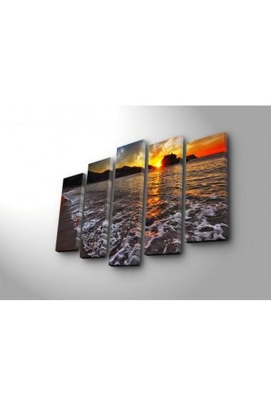 Set 5 tablouri din panza Bonanza ASR-242BNZ5265 Multicolor