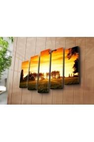 Set 5 tablouri din panza Bonanza ASR-242BNZ5282 Multicolor