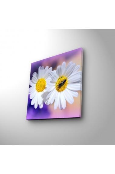 Tablou din panza, cu lumina LED Ledda ASR-254LED1272 Multicolor