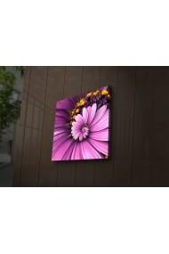 Tablou din panza, cu lumina LED Ledda ASR-254LED1276 Multicolor