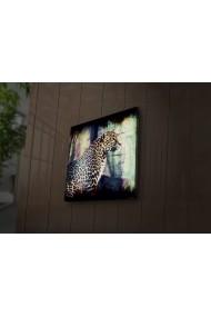 Tablou din panza, cu lumina LED Ledda ASR-254LED1283 Multicolor