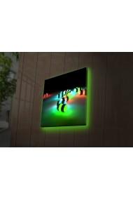 Tablou din panza, cu lumina LED Ledda ASR-254LED4210 Multicolor