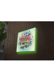 Tablou din panza, cu lumina LED Ledda ASR-254LED4214 Multicolor