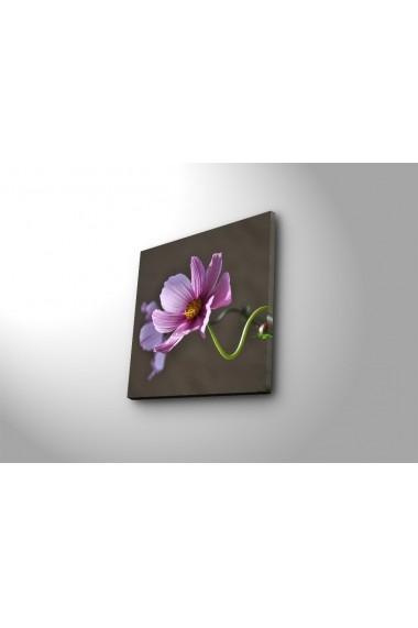 Tablou din panza, cu lumina LED Ledda ASR-254LED3209 Multicolor