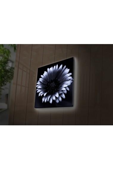 Tablou din panza, cu lumina LED Ledda ASR-254LED4240 Multicolor