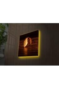 Tablou din panza, cu lumina LED Ledda ASR-254LED4243 Multicolor