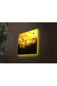 Tablou din panza, cu lumina LED Ledda ASR-254LED4259 Multicolor