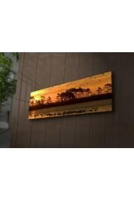 Tablou din panza, cu lumina LED Ledda ASR-254LED1223 Multicolor