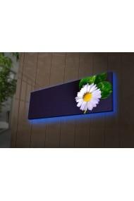 Tablou din panza, cu lumina LED Ledda ASR-254LED3254 Multicolor