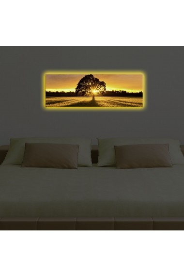 Tablou din panza, cu lumina LED Ledda ASR-254LED3266 Multicolor
