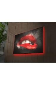 Tablou din panza, cu lumina LED Ledda ASR-254LED3288 Multicolor