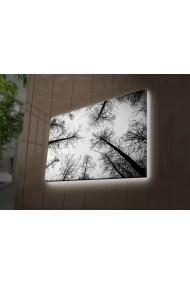 Tablou din panza, cu lumina LED Ledda ASR-254LED3289 Multicolor