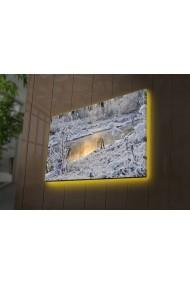 Tablou din panza, cu lumina LED Ledda ASR-254LED4201 Multicolor
