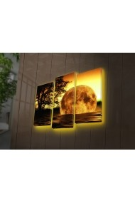 Tablou din panza, cu lumina LED(3 articole) Ledda ASR-254LED4281 Multicolor