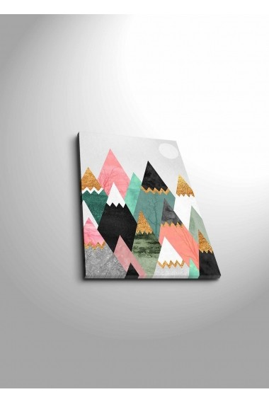Tablou decorativ Canvart 249CVT1398 multicolor