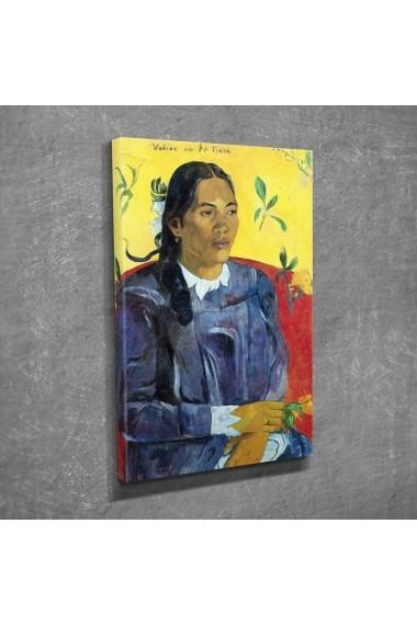 Tablou decorativ Vega 265VGA1243 multicolor