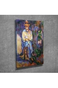 Tablou decorativ Vega 265VGA1248 multicolor